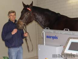 VMS-Trainer marquis VMS - Trainings- und Therapiestand für Pferde